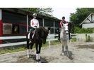 【神奈川・相模原/相模湖】乗馬お手軽体験3回コースの様子