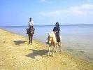 【沖縄・宮城島】乗馬をたっぷり楽しめます!山と海を満喫コース(120分プラン)の様子