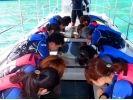 【沖縄・伊良部島】青の洞窟スタンダードプラン!シーカヤック&シュノーケル&グラスボート海底遊覧の様子