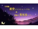 【沖縄・石垣島】星空ナイトシュノーケル&神秘の夜光虫ツアーの様子