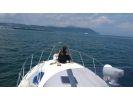 【鹿児島・クルージング】桜島目前の錦江湾であなただけのスペシャルクルージングを満喫!の様子