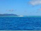 【沖縄県・ウェイクボード】ウェイクボードで沖縄の海の上を滑走!ウェイクボード(15分×2セット)の様子