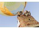 【埼玉県・加須】こんなことまで!?大自然を満喫する迫力の熱気球体験の様子