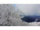 【奈良・三峰山】樹氷の三峰山登山と雪遊びツアー!の様子