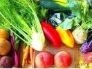 【神奈川県・足柄上郡】自然の恵みと景色がご馳走!新鮮野菜を採って味わうBBQ体験の様子