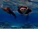【沖縄/宮古島】ボートシュノーケルで、宮古島周辺の美ら海をじっくりのぞいてみよう!の様子