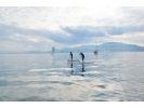 【琵琶湖・SUP体験】琵琶湖・大津SUP体験プラン(たっぷり2時間)の様子