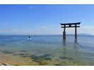 【琵琶湖・SUP体験】琵琶湖・湖西SUP・白髭神社参拝プラン(たっぷり2時間)の様子
