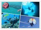 【ボートで行く青の洞窟体験ダイビング+パラセ】ツアー写真プレゼント・餌付け付き・快適なボートでご案内の様子