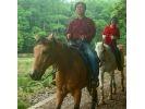 【兵庫・篠山】初心者森林浴外乗★白馬で森林を散歩の様子