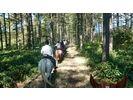 【北海道・帯広】ホーストレッキング(3時間・山林コース)の様子