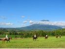 【北海道・ニセコで乗馬】ホーストレッキング(60分)の様子