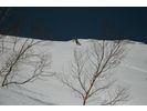 【新潟・苗場】スキー/スノーボード一般レッスン (半日プラン)の様子