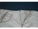 【新潟・苗場】ランチ付き!スキー/スノーボードジュニアレッスン (1日プラン)の様子