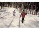 【長野・クロスカントリー】銀世界を手軽に楽しめる。クロスカントリースキー体験(半日コース)の様子