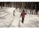 【長野・クロスカントリー】冬しか体験できない森の静けさを。クロスカントリースキー体験(1日コース)の様子