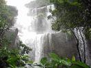 【沖縄・西表島】ユツン三段の滝&マヤロックの滝トレッキング(1日コース)の様子