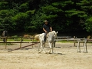 【愛知・瀬戸】初心者・初めての方歓迎!体験乗馬プランの様子