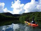 【西表島 カヌー トレッキング ジャングル 沢遊び】めっちゃ楽しい!島大はしゃぎコースの様子