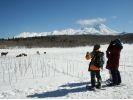 【知床・雪山ツアー】冬の知床自然体験1日コース【スノーシュー・流氷ウォーク】の様子