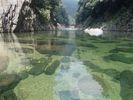 【屋久島・1日】屋久島で一番大きい安房川のカヌーツアーの様子