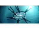 【鹿児島・屋久島】ウミガメに会えるかも?シュノーケル体験(半日コース)の様子