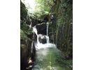 【京都・経験者向け】シャワークライミング アドバンスドコース VOL-1(白滝谷コース)の様子