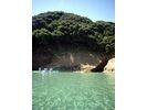 【鹿児島・種子島】シーカヤック マングローブ林&珊瑚礁探検(半日コース)の様子