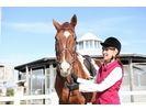 1回限りの特別料金!【愛知・名古屋で乗馬体験】ビジター体験プランの様子