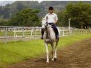 【宮崎・綾】未経験者からちょっと経験のある人向け!乗馬体験(初心者コース)の様子