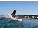 【茨城・つくば市】自前のボードでサーフィン!一般コース実習!の様子