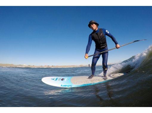 TED SURF SHOP