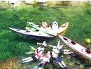 【鹿児島・屋久島】世界遺産を巡る!リバーカヤック体験(半日コース)の様子