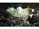 【山梨 河口湖 富士山】青木ケ原樹海・洞窟探検ミステリーコース【Aコース】の様子