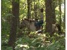 【北海道 函館 乗馬】たっぷり乗馬を楽しめる ホーストレッキング外乗 林間コース(90分)の様子