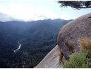 【鹿児島・屋久島】白谷雲水峡Cコースの様子