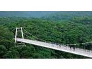 【沖縄・石垣島】大自然の中で走ろう!セグウェイツアー【バンナの森・2時間】の様子