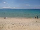 【鹿児島・屋久島】あれもこれも欲張る!白谷トレッキング&体験ダイビングの様子