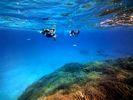 【沖縄・石垣】ワンランク上の水中世界を体験!1day黒島シュノーケリングコース【石垣島発着】の様子