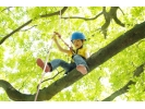 【沖縄・やんばるの森】木の上が好きな人は集まろう!ツリートレックツアー!!の様子