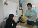 Blue Dolphin Japan(ブルードルフィンジャパン)