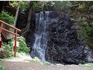 【山梨・河口湖】河口浅間神社~母の白滝ネイチャーガイドウォークの様子