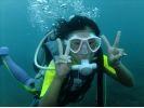 【東京 三宅島】体験ダイビング&ドルフィンスイムを1日で行うセットプランの様子