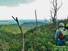 【沖縄・西表島】絶景を味わう!古見岳トレッキングツアー!!★1日プラン★の様子