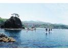 【柏崎・福浦】足元の海はまるで水族館!絶景の青海川SUPの様子