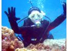 【鹿児島・奄美大島】体験ダイビング&マングローブカヌーの様子