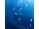 West Beach Diving Center(ウエストビーチダイビングセンター)