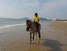 【福岡・宗像】乗馬を満喫!ビーチ乗馬体験(馬場レッスン+1時間外乗)の様子