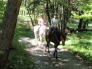 【山梨・八ヶ岳】お手軽に体験しよう!乗馬レッスン+ミニトレッキングの様子