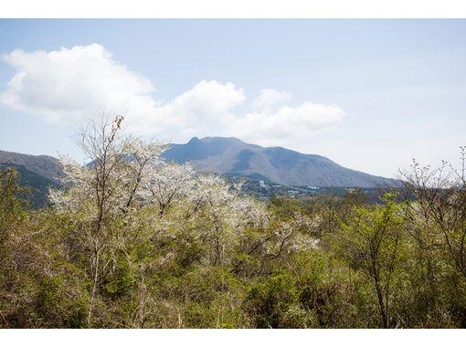 Hakone Mountain Ripper(箱根マウンテンリッパー) のギャラリー